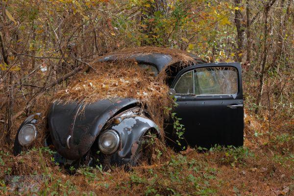 Sell junk car Raleigh